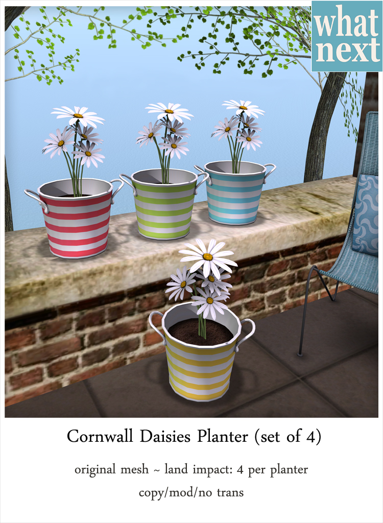 {what next} Cornwall Daisies Planters for Lazy Sunday