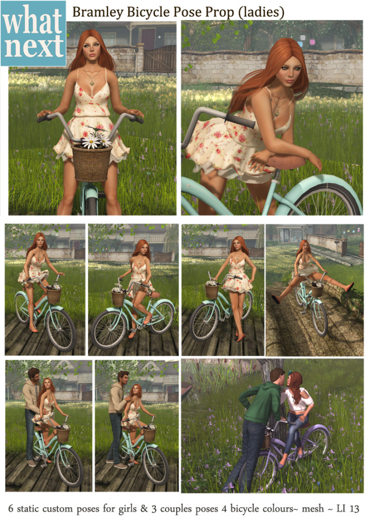{what next} Bramley Bicycle Pose Prop for Ladies_small