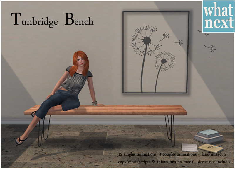 {what next} Tunbridge Bench Promo small