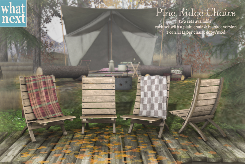 {what next} Pine Ridge Chairs for FLF small