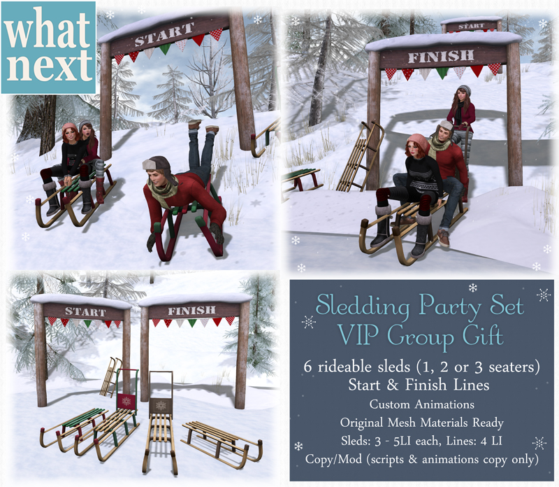 {what next} Sledding Party Set - VIP Group Gift small