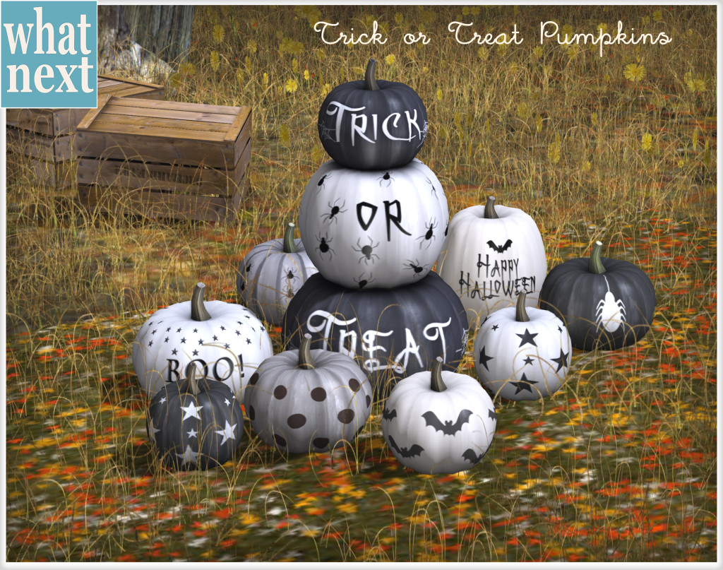 {what next} Trick or Treat Pumpkins MP