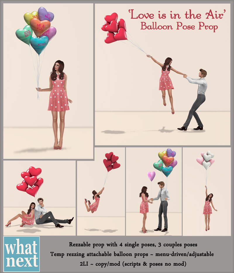 {what next} Love is in The Airt Balloon Pose Prop 800