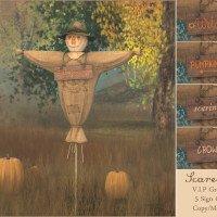 {what next} Scarecrow VIP Group Gift 1024