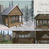 {what next} Alpine Cabin Promo 1024