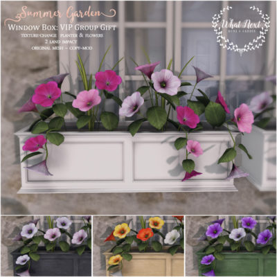 Flowering Window Boxes – VIP Group Gift
